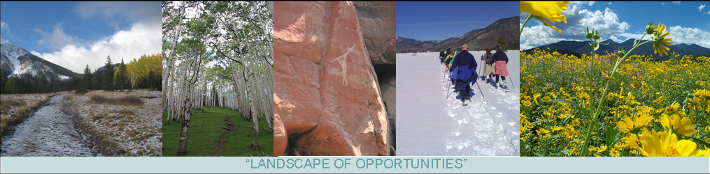 Landscape of Opportunities