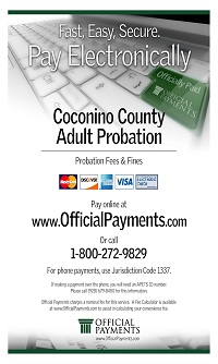 CLI321_-_Coconino_Adult_Probation_OnLinePayments.jpg