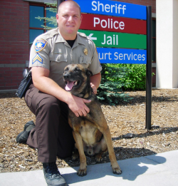 Coconino County Sheriff's Office K9 Viktor