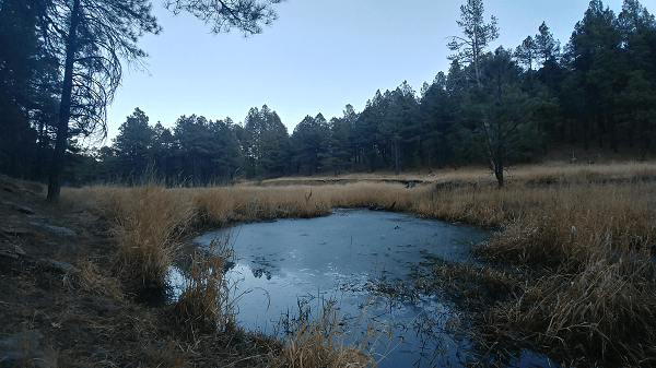Pumphouse County Natural Area