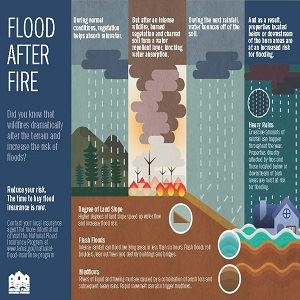 Flood After Fire