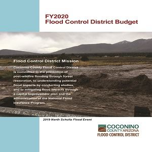 FY2020 FCD Budget