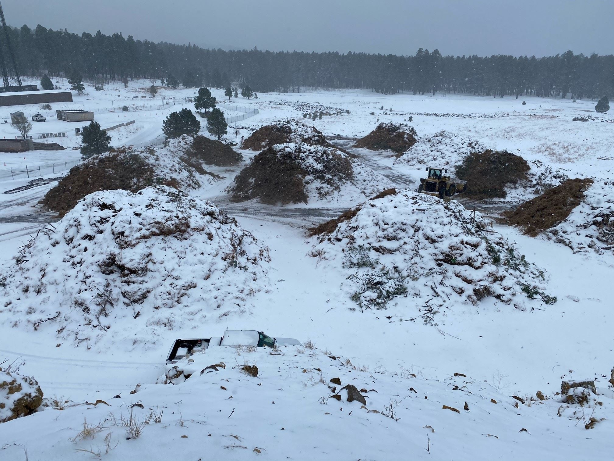 Large piles of green waste covered by light layer of snow.