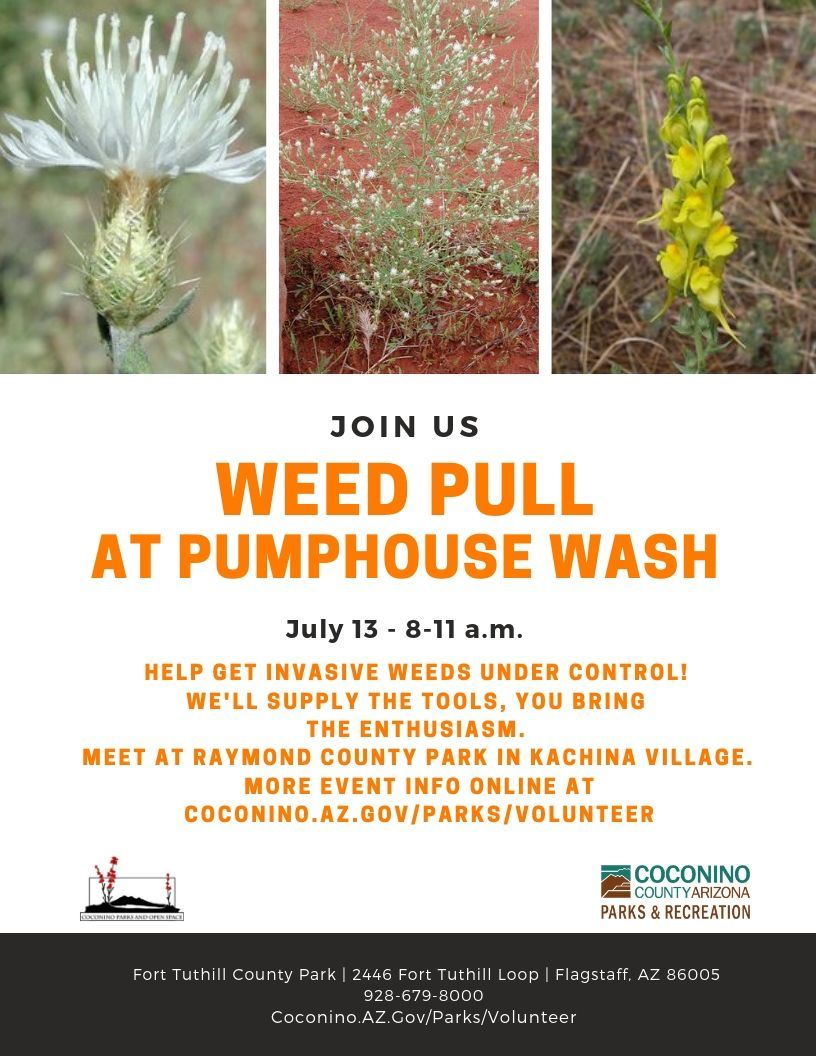 Weed Pull at Pumphouse