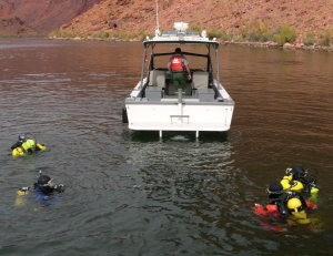 The Dive Team practice search techniques