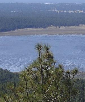 Rogers Lake View